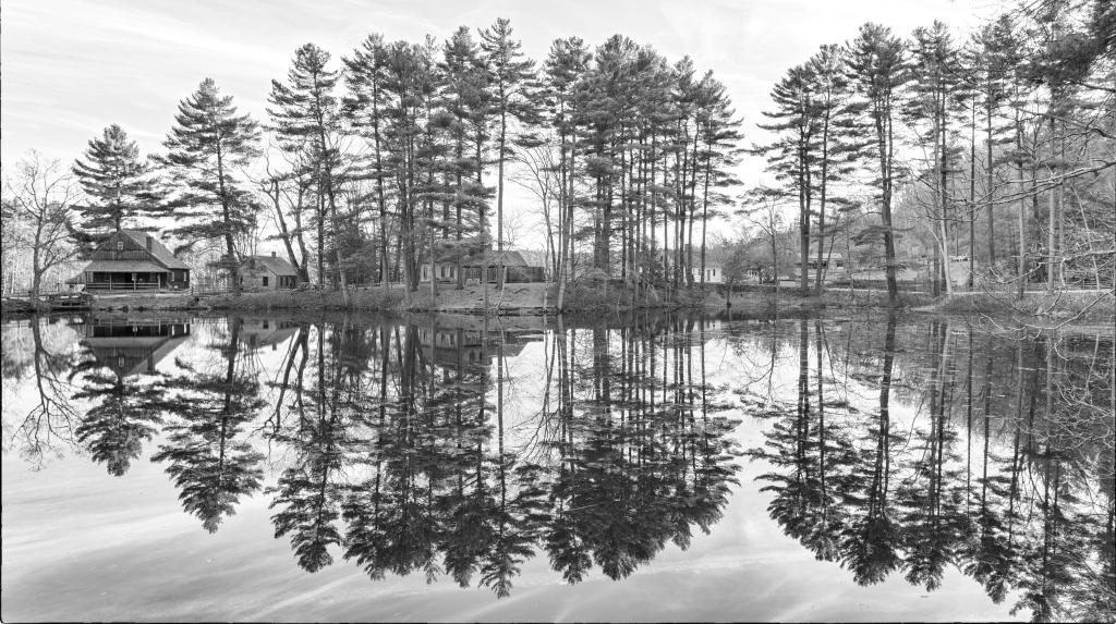 Lake Reflection  BW DSC_4650