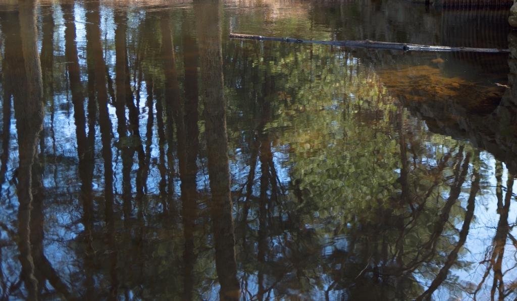 Reflection Stow Walk bw