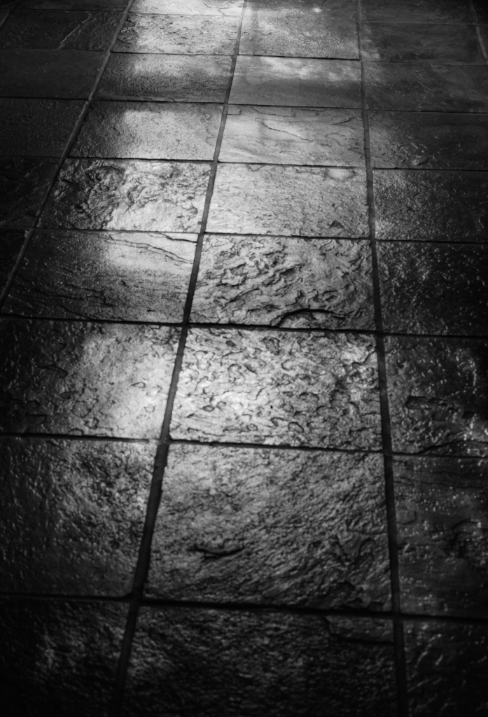 Floor Shadow BW 2 L1002804