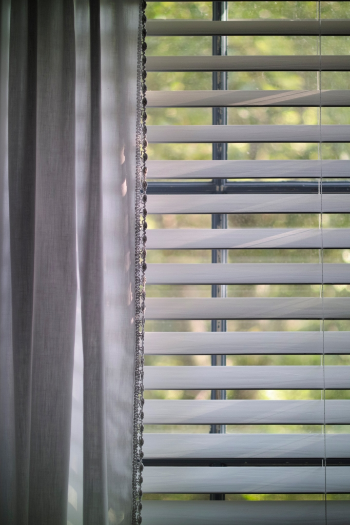 tHE bLINDS ARE DRAONW_SDI2956
