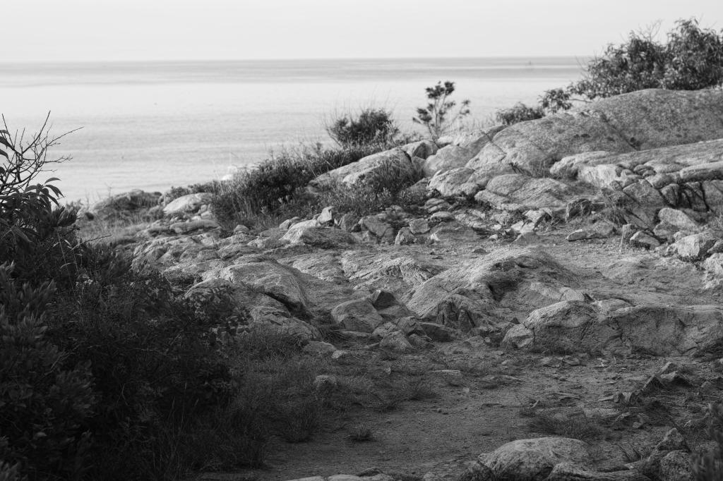 rocks-in-rockport_sdi2832