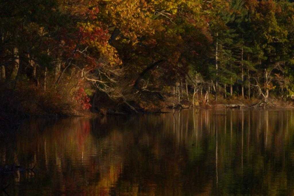 fall-reflection-8-x12-arty-2_dsc9265-1