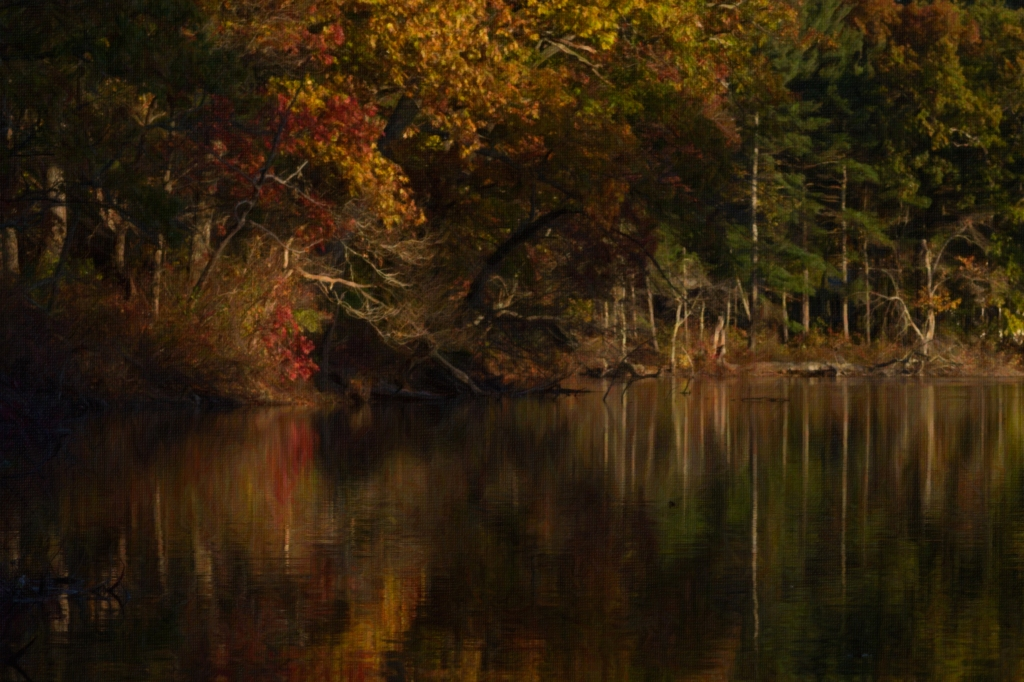 fall-reflection-8-x12-arty-2_dsc9265-1