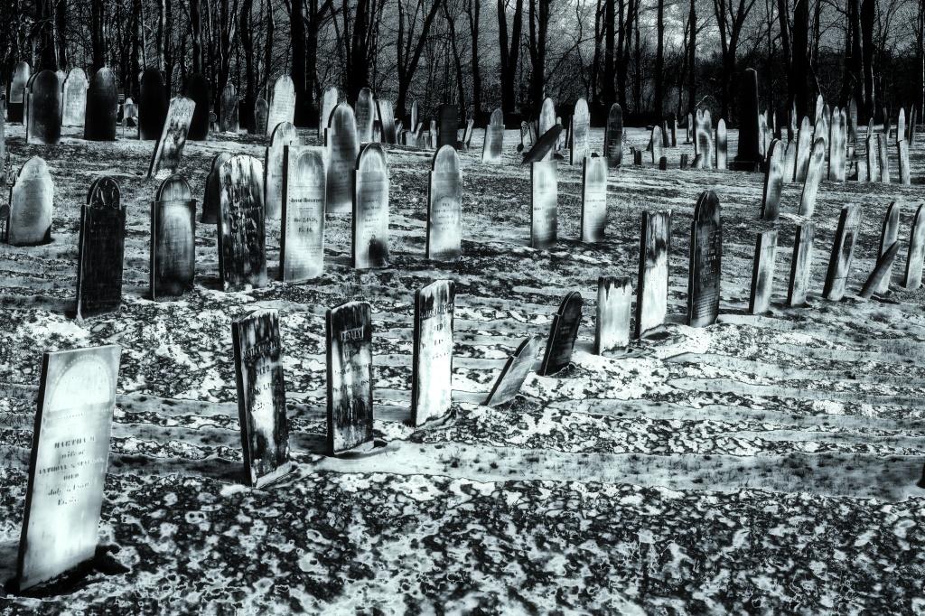 graves-berlin-3_sdi3166