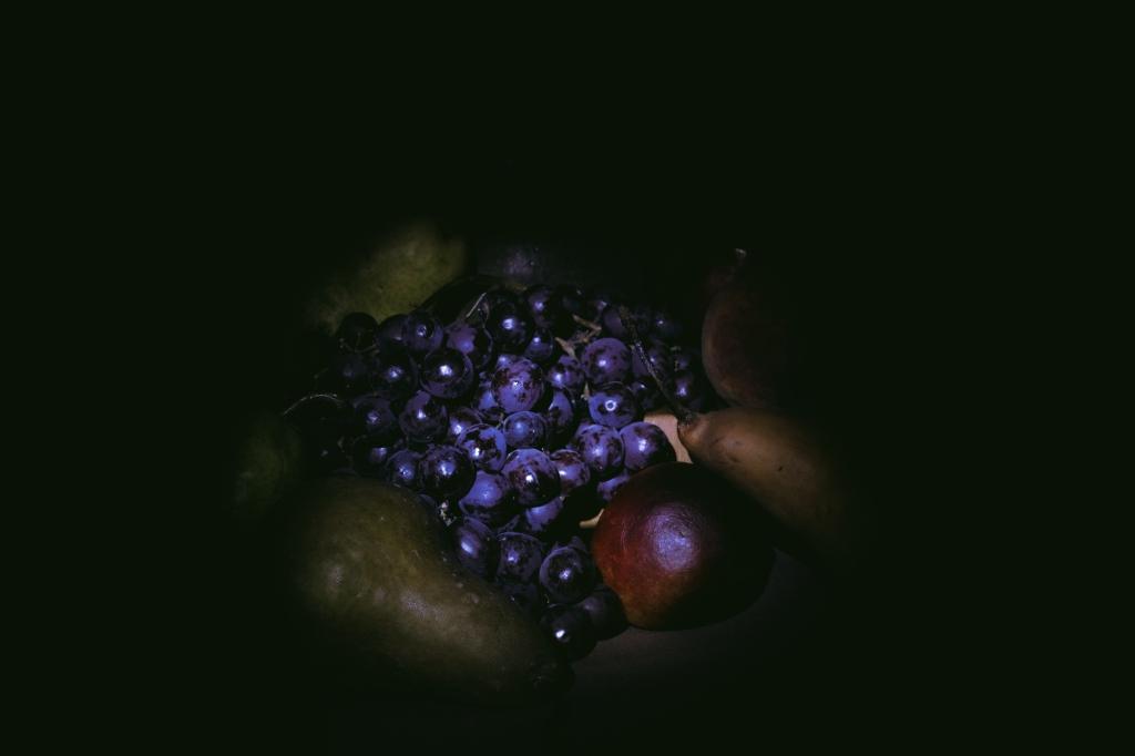 fruit_sdi3347