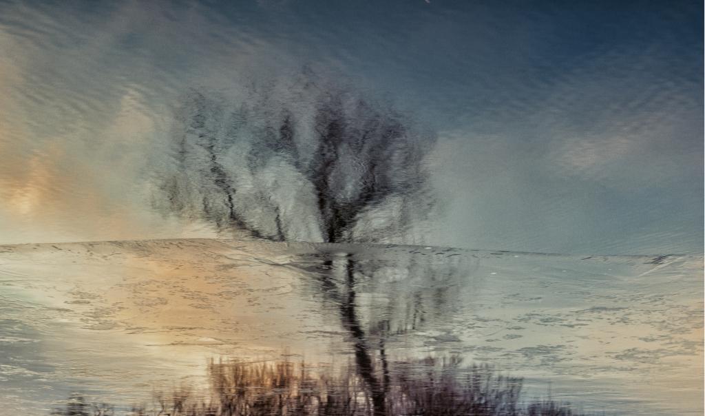 reflectonl1003774-1
